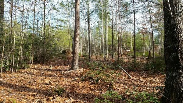 325 Waters Edge , 3376788, Nebo / Lake James, Vacant Land / Lot,  for sale, Kristen Haynes, New Home Buyers Brokers / Realty Pros